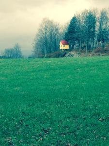 elm brook farm