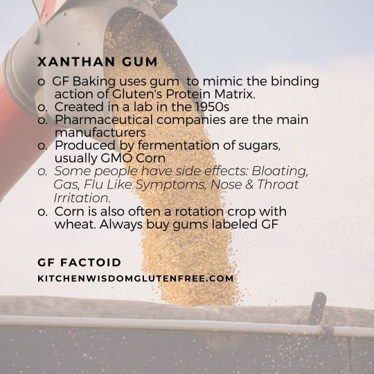 xanthin gum