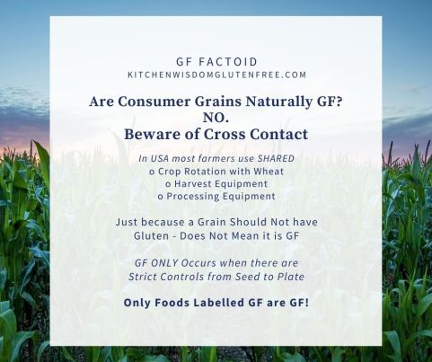 consumer grains not gf