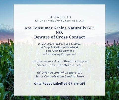 consumer grains not gf
